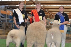 2016-SA-Sheep-Expo_DSC_0203