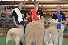 2016-SA-Sheep-Expo_DSC_0203_D