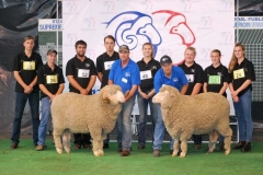 2016-SA-Sheep-Expo_DSC_0523