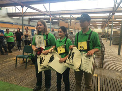 Junior-Winners